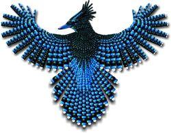 Beadwork Steller's Jay Naumaddic Arts! NaumaddicArts@gmail.com