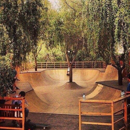 We're daydreaming of this awesome backyard! #skatepark #scooter #ramp #pulsescooters