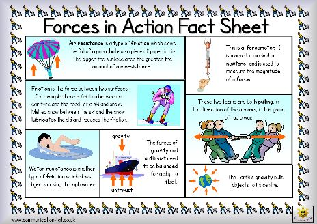 Here's a simple fact sheet on forces. Includes a helpful glossary.