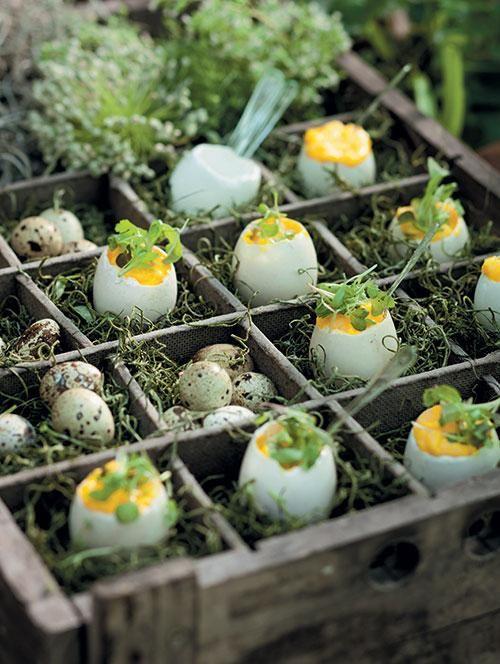 Truffle scrambled eggs | Truffelroereiers
