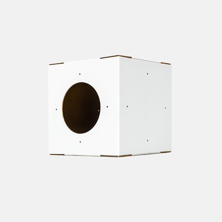 Single White Cat Box