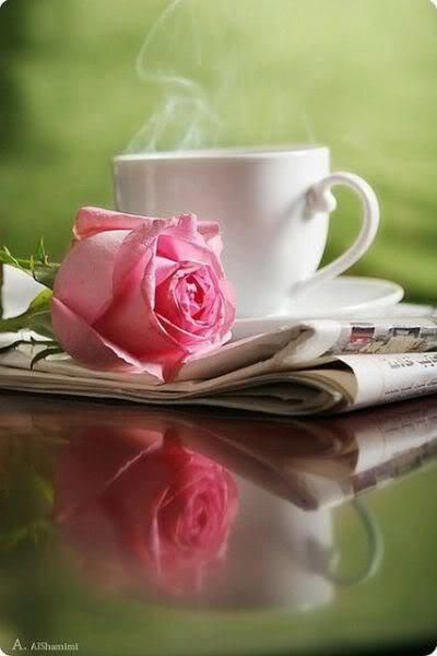 Morning! The newspaper, a rose and a cup of coffee for you!! #roses #bokeh #photography