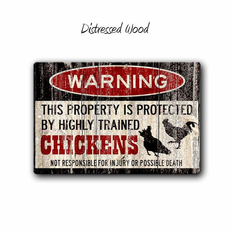 Chicken Sign,Funny Metal Signs,Chicken warning Sign,Funny Chickens sign,Protected by,Chickens,Homestead Sign,Chicken Lady gift,SS1_010 by BlueFoxGifts on Etsy https://www.etsy.com/listing/475969729/chicken-signfunny-metal-signschicken