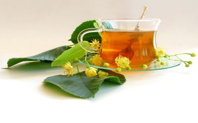 Linden tea wallpaper