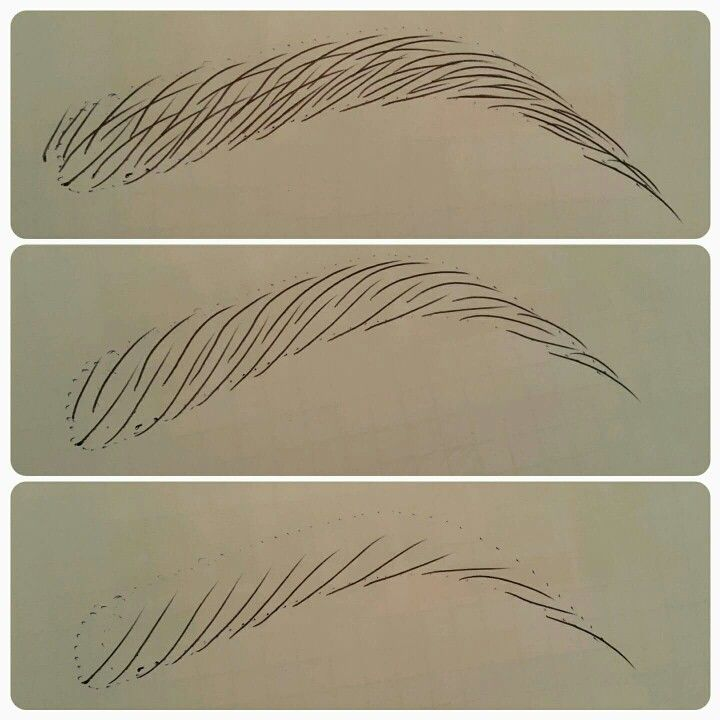 Sviaslotav Otchenash Mais The Most Complete Drawing Course... http://the-secretstodrawing.blogspot.com?prod=9V8IDjuQ