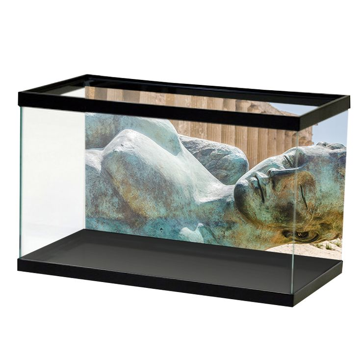76 best images about our products on pinterest vinyls for Fish tank glue