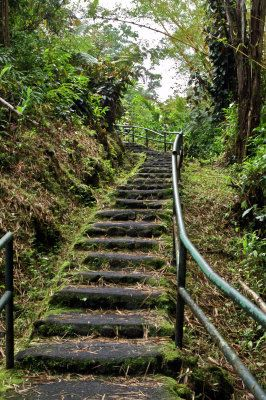 Stairway on the hike to Akaka Falls, The Big Island, Hawaii.
