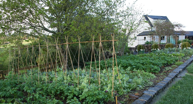 i like how she has her vegetable garden around the outside of the lawn.  I would use railway sleepers instead of stone