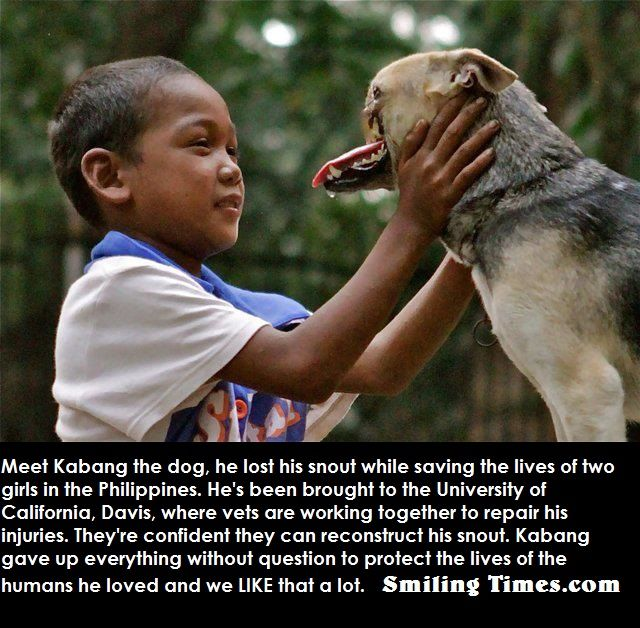 FAITH IN HUMANITY RESTORED VISIT US EVERY DAY FOR MORE =)