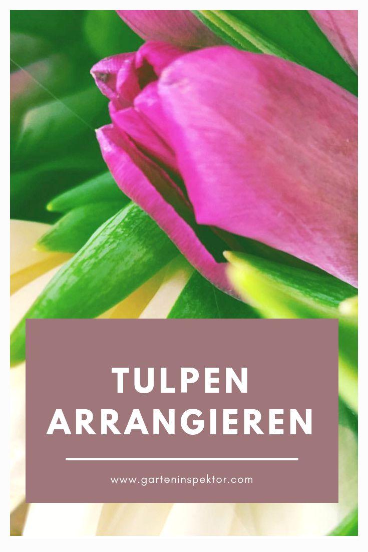 Die Neue Kreativitat Tulpen Arrangements Tulpen Kreativ