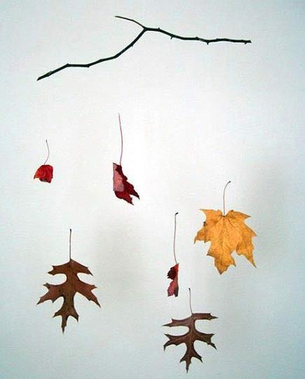 Leaves, a branch, clear fishing line.