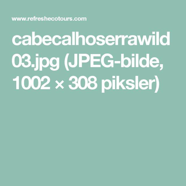 cabecalhoserrawild03.jpg (JPEG-bilde, 1002×308 piksler)
