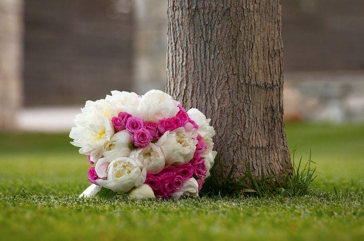 Φωτογράφιση γάμων, βαφτίσια, εκδηλώσεις