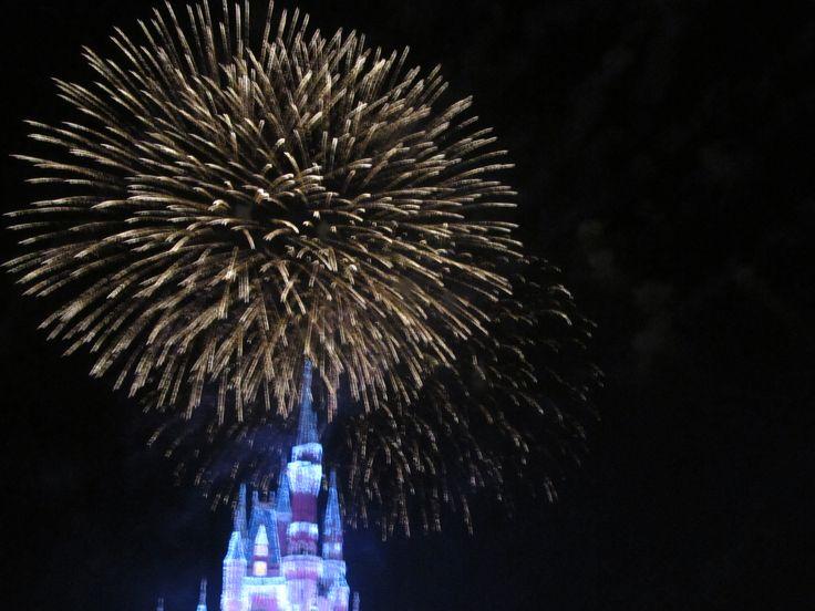 fireworks at Magic kingdom. Proud of my shot xx