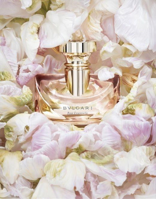 Bvlgari Rose Essentiel. Bergamot and orange precede Turkish rose, orange blossom and jasmine.