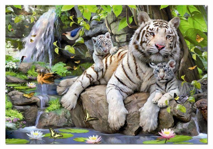 Tygři, lvi, šelmy - Zvířata | Puzzle-puzzle.cz
