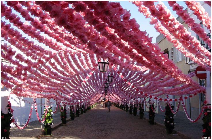 Festa da Flor_Campo maior