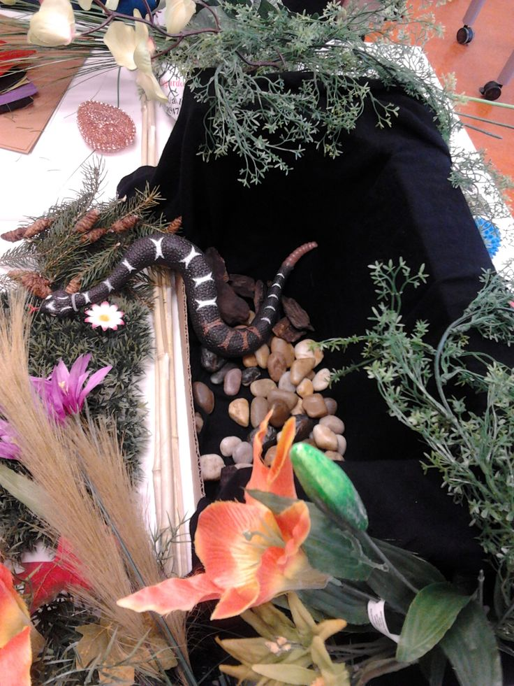 Small World Play: More images of our class  Fantasy Forest: With our magical shelter for our snake.