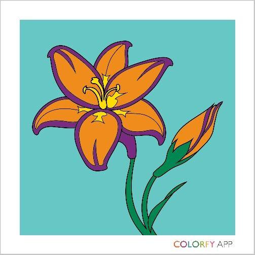 Exotische Blume