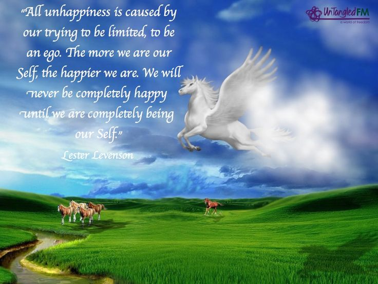 """""""All unhappiness is caused by our trying to be limited, to be an ego. The more we are our Self, the happier we are. We will never be completely happy until we are completely being our Self."""" Lester Levenson."""
