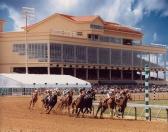 Retama Park Horse racing In SA TX