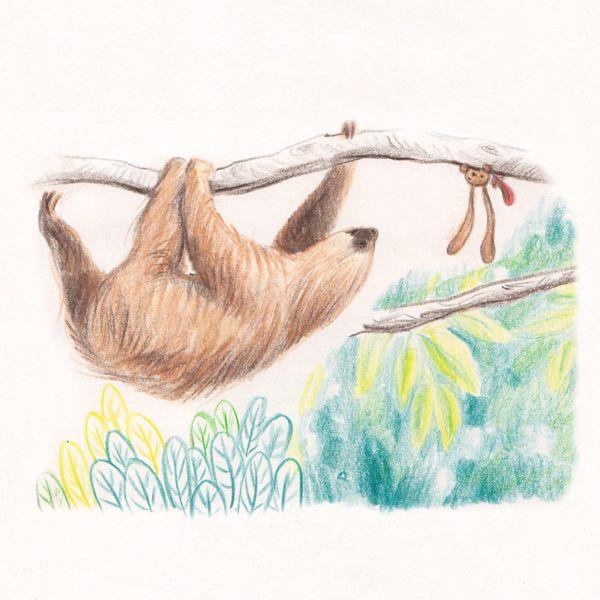 """Ciacio and the sloth, sketch, making of """"Ciacio in Amazonia"""" picture book"""