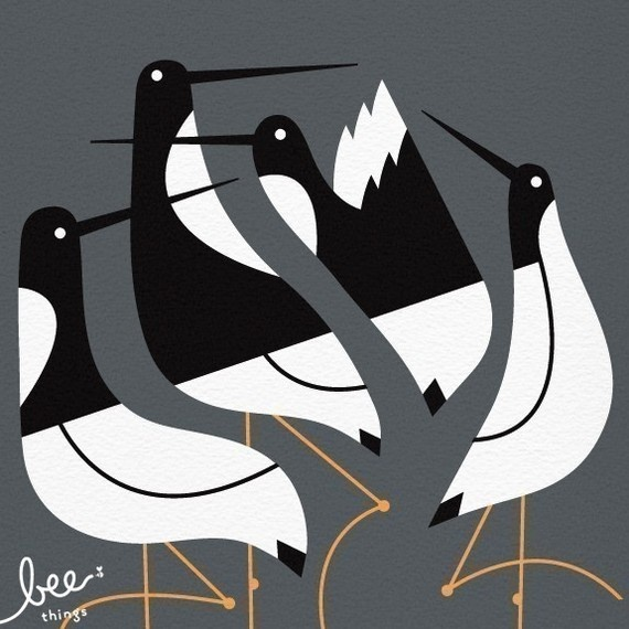 We just bought this terns print from Bee Things, which is my husband's old friend Jeff and his wife Shay. They do lovely work! $25.