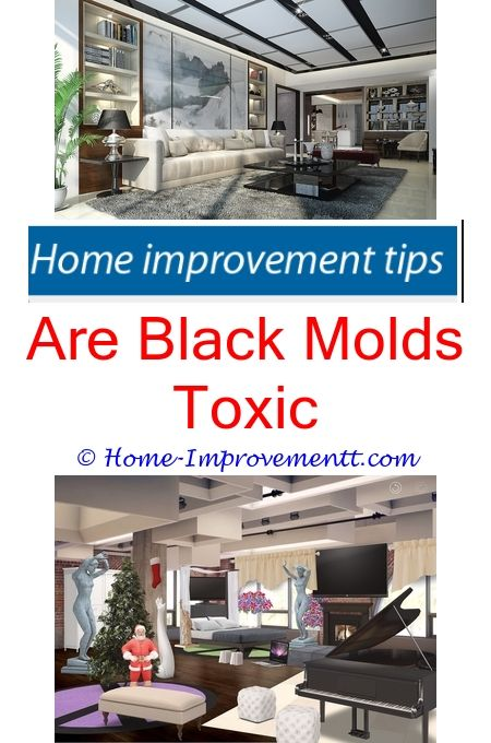 Best 25 home design software ideas on pinterest designer are black molds toxic home improvement tips 43652 solutioingenieria Image collections