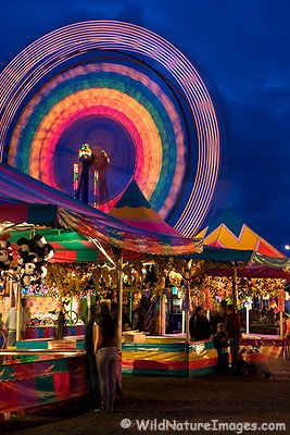 The Alaska State Fair offers fabulous family fun in late August/early September in Palmer, AK!