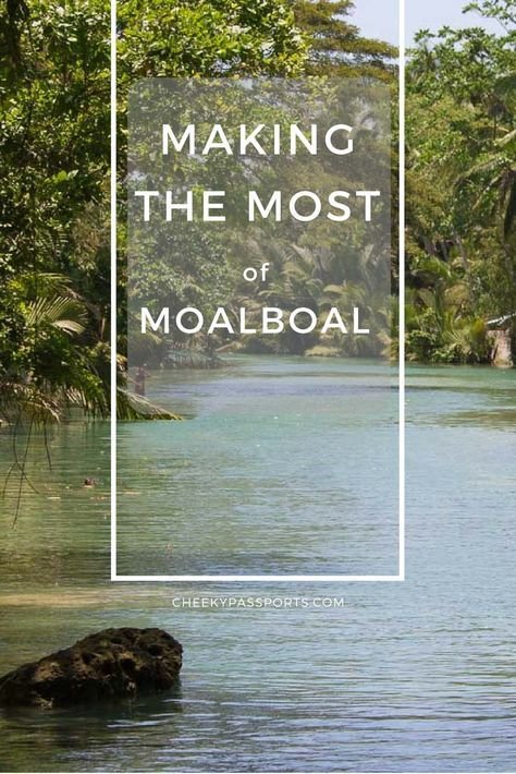 Making the Most of Moalboal - A three-hour bus ride away from Cebu City, this little fishing town is charming enough to be included on the backpacker trail, yet despite its popularity, is not as stifling as other hangouts such as El Nido. Here's our guide to making the most of Moalboal.