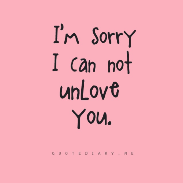 Sorry Love Quote: Quotes And Sayings