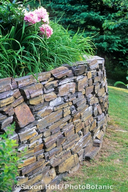 Dry Stack (no mortar or earth fillers) stone retaining wall  Saxon Holt Photography/PhotoBotanic Garden Library