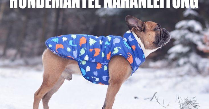 47 best Hunde: HB, Leinen, Mäntel images on Pinterest   Haustiere ...