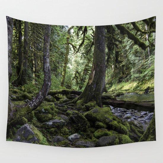 Deep Forest Greens | Wall tapestry | Photo Tapestry | Nature Tapestry | by JoshJacobsonPhoto on Etsy https://www.etsy.com/listing/258750936/deep-forest-greens-wall-tapestry-photo