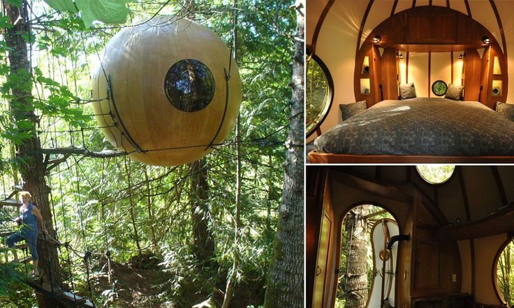 Canadian inventor builds world's first 'spherical treehouse hotel'