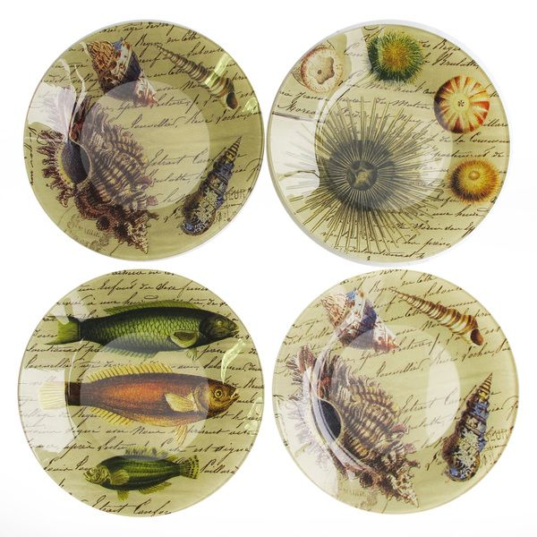 Best 63 dinnerware ceramic beach ocean sea creatures for Buy canape shells