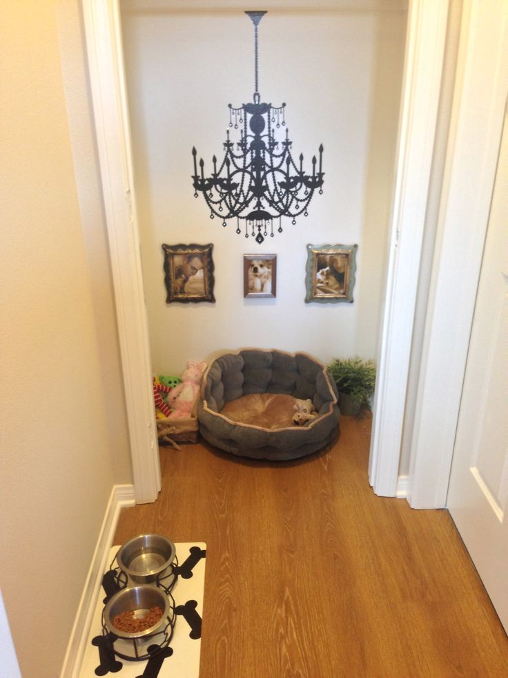 "Just transformed our hall closet into a dog room aka ""King's throne room"" after some pinspiration!"