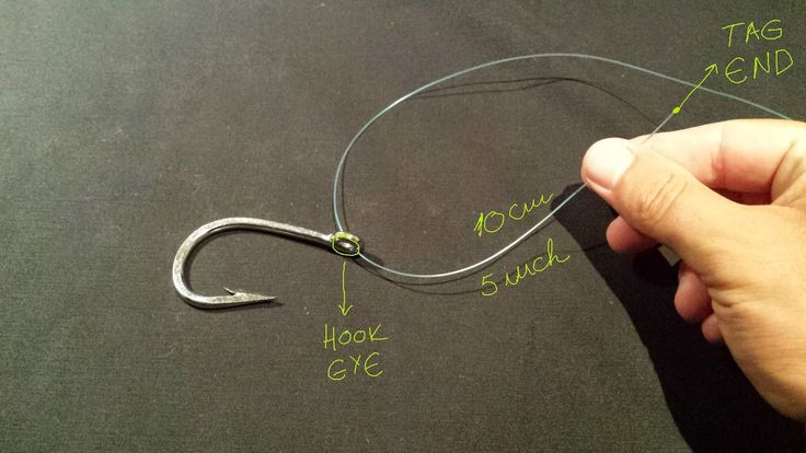 Best 25 clinch knot ideas on pinterest fishing knots for Clinch knot fishing