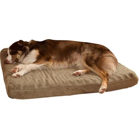 9 best tucker images on pinterest | pet beds, pet products and bagels
