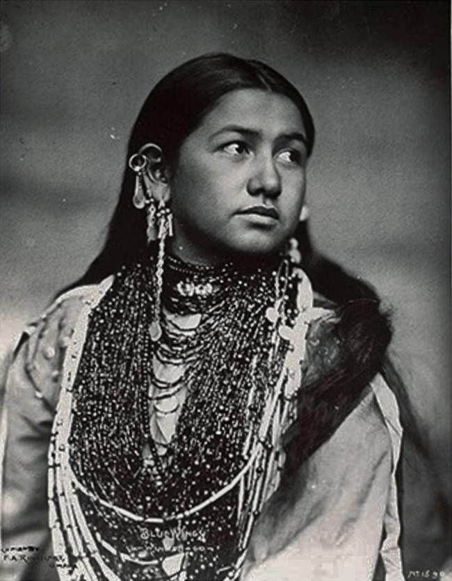 Cherokees Natives Americans Indian Women   1900 photo of Winnebago Indian princess Blue Wings