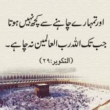 Image result for thoughts in urdu