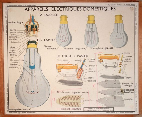Sciences Vintage Affiche scolaire double face par LeRetroMarket