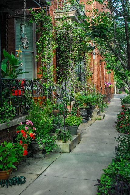 Savannah, Georgia - USA I've only been a couple of times, but this is one of the loveliest cities in America