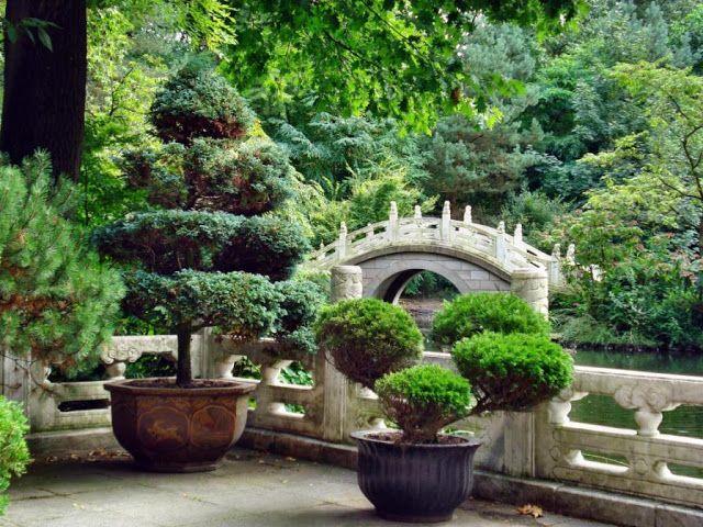 1000 id es sur le th me pagode jardin sur pinterest for Jardin chinois miniature