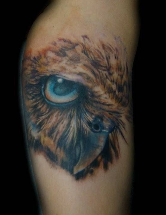 Owl shey haf ded elite ink tattoos myrtle beach sc for Charleston tattoo artists