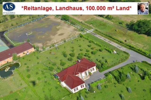 Alleinanlage, ca. 100.000 qm Land mit Reitanlage und Landhaus zu verkaufen!  Details zum #Immobilienangebot unter https://www.immobilienanzeigen24.com/kroatien/osjeko-baranjska/31000-osijek/haus-kaufen/25040:-763079347:0:mr2.html  #Immobilien #Immobilienportal #Osijek #Haus #Kroatien