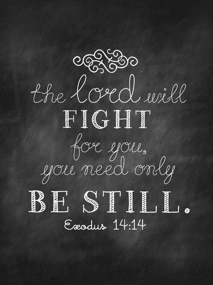 The LORD will fight for you; you need only to be still. —Exodus 14:14 Be still, and know that I am God; I will be exalted among the nations, I will be exalted in the earth!