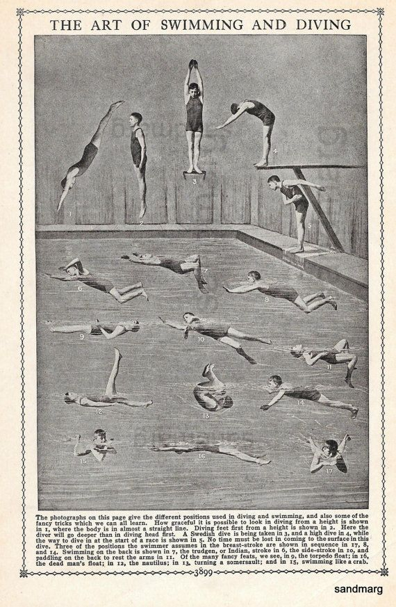 Boys Swimming Diving Athletic Edwardian Reference by sandmarg