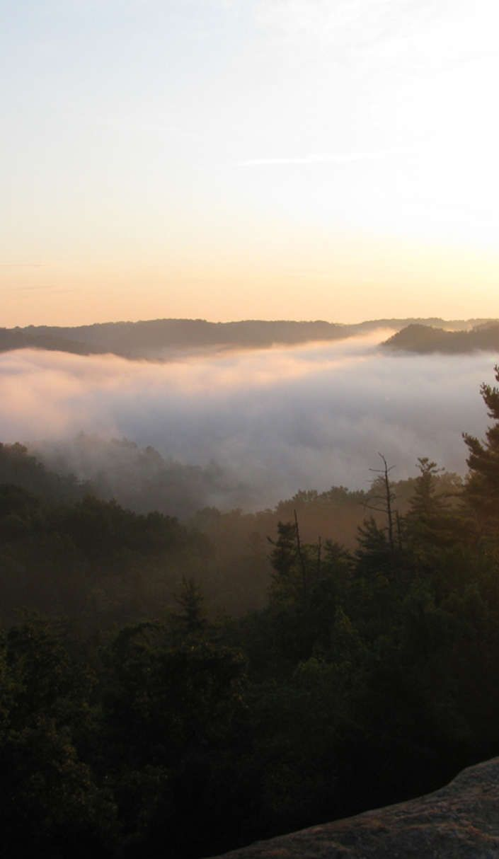 Here's why Red River Gorge is a must-visit natural wonder on Roadtrippers
