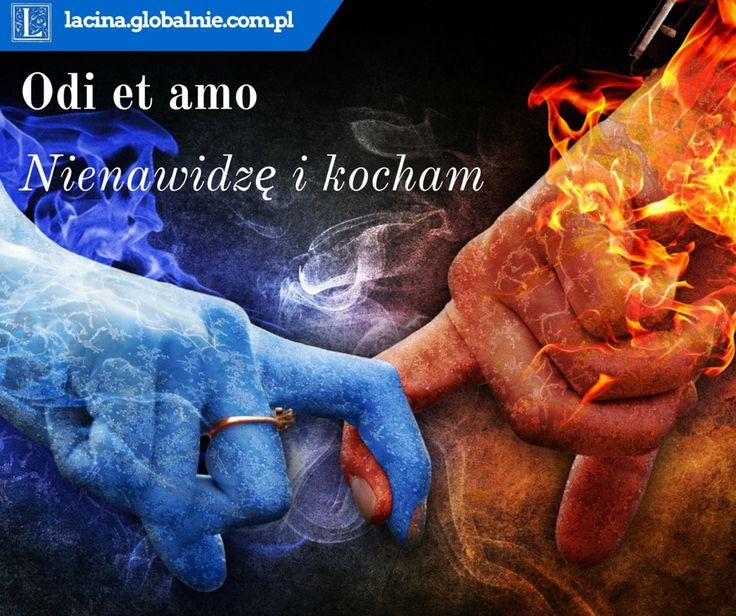 Najpiękniejsze sentencje o miłości  Odi et amo - nienawidzę i kocham http://lacina.globalnie.com.pl/sentencje-o-milosci/ #miłość #sentencje #łacina #złotemyśli #cytaty #sentencjeomiłości